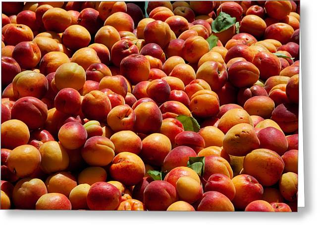 Nectarines For Sale At Weekly Market Greeting Card by Panoramic Images