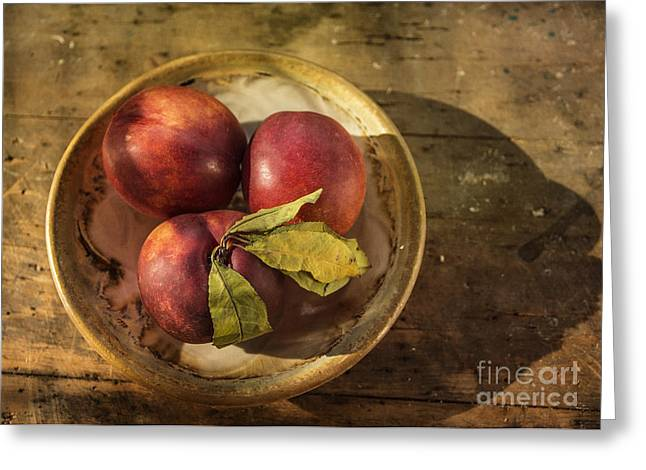 Nectarines In A Bowl Greeting Card by Terry Rowe