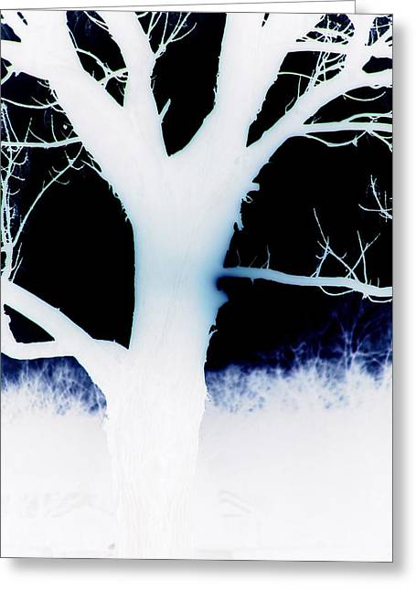 Negative Abstract Greeting Card by Micael Pace