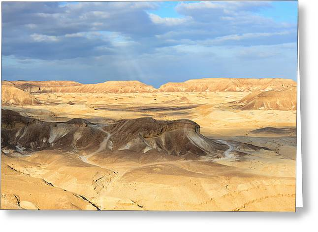Negev Desert  Greeting Card