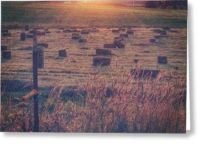 Neighboring Farm At Sunset...have A Greeting Card by Blenda Studio