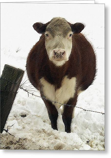 Neighbor's Cow Greeting Card by Andrew Govan Dantzler