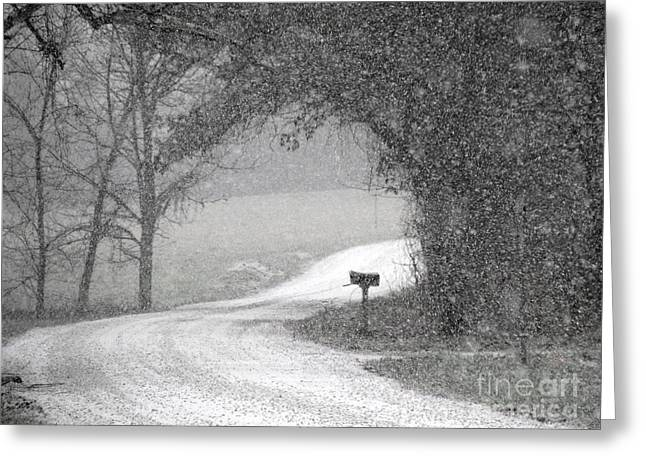 Neither Rain Nor Snow.. Greeting Card