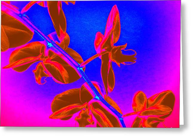 Neon Blooms Greeting Card
