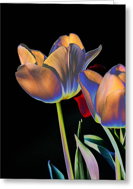 Neon Tulips Greeting Card