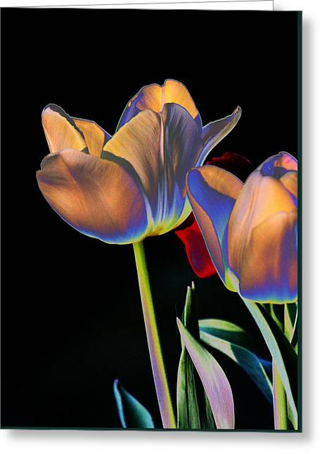 Neon Tulips Greeting Card