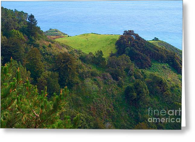 Nepenthe View At Big Sur In California Greeting Card by Charlene Mitchell