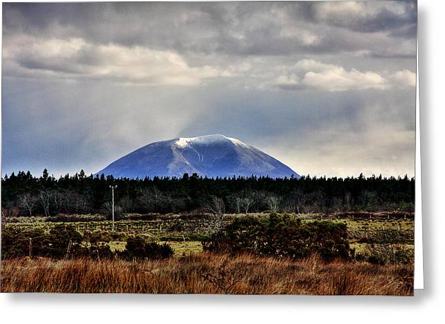 Nephin With A Cap Greeting Card by Tony Reddington