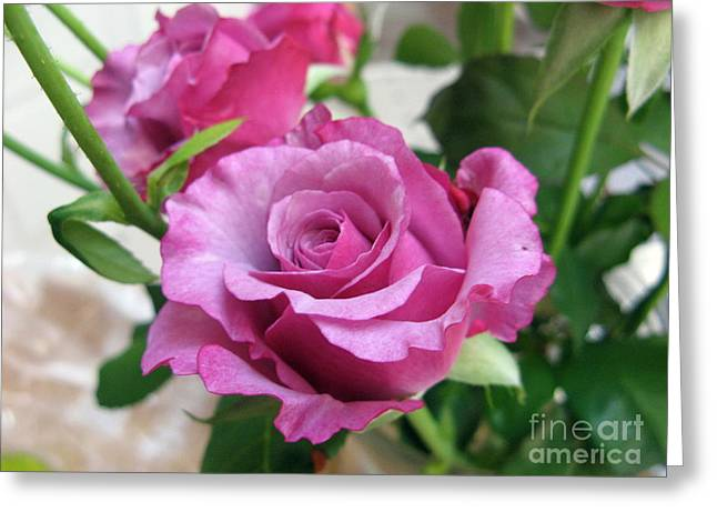 Neptune Rose Greeting Card by Marlene Rose Besso