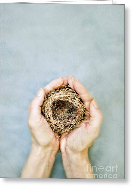 Nest Greeting Card