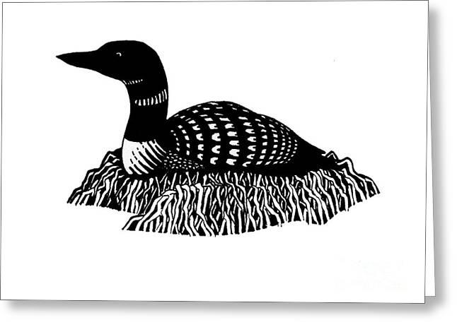 Nesting Loon Greeting Card