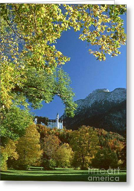 Neuschwanstein Castle Bavaria In Autumn Greeting Card by Rudi Prott