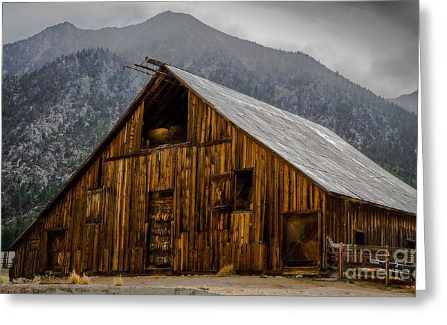 Nevada Barn Greeting Card by Mitch Shindelbower