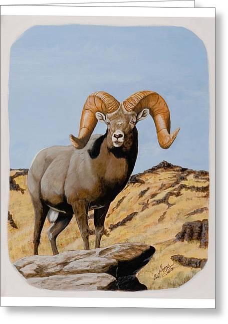Nevada California Bighorn Greeting Card