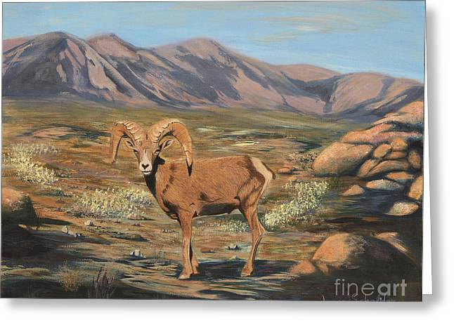 Nevada Desert Bighorn Sheep Greeting Card by Jayne Schelden