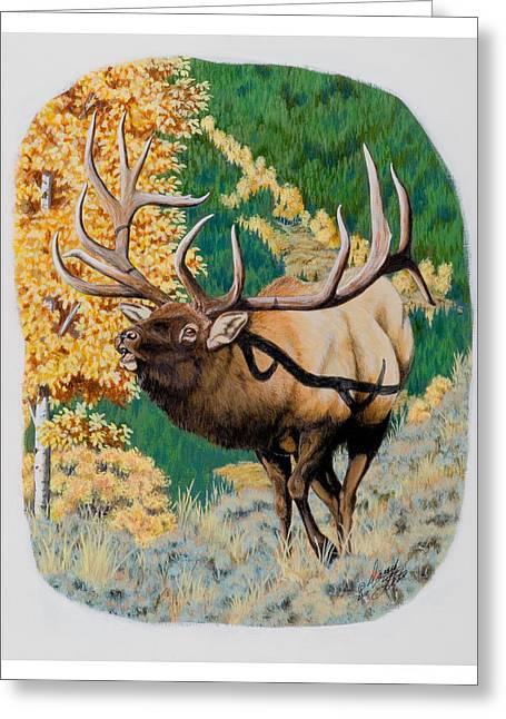 Nevada Nontypical Elk Greeting Card