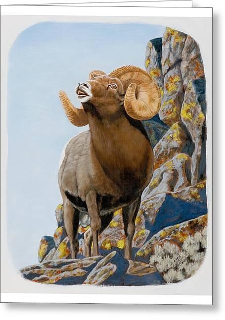 Nevada Rocky Mountain Bighorn Greeting Card