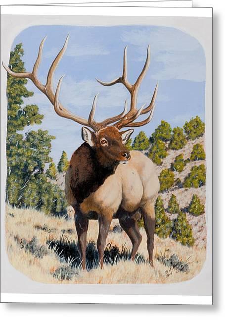 Nevada Typical Elk Greeting Card