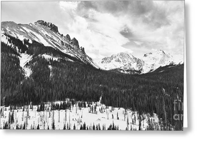 Never Summer Wilderness Area Panorama Bw Greeting Card by James BO  Insogna