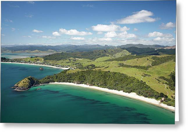 New Chums Beach, And Motuto Point Greeting Card by David Wall