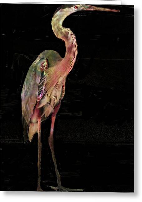 New Coat For The Heron Greeting Card by Carol Kinkead
