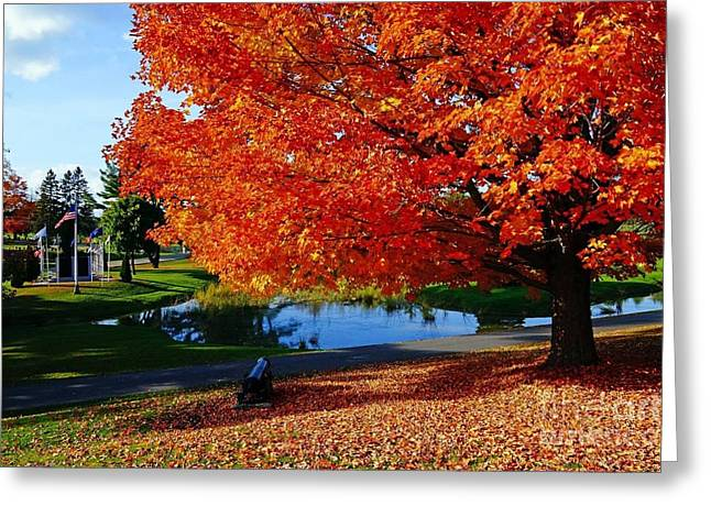 New England Fall  Greeting Card by Melissa C