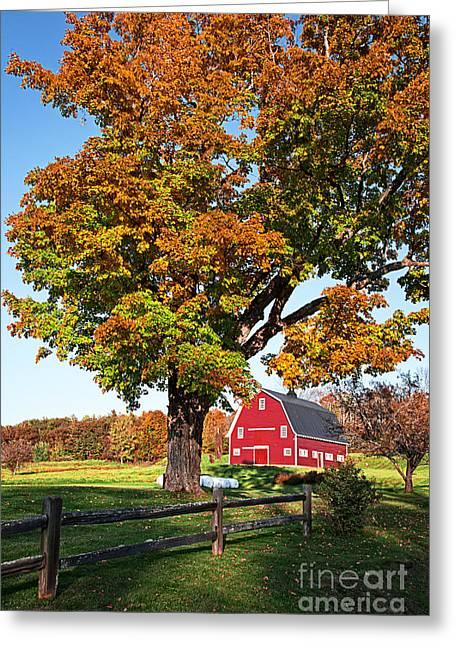New England Farm Fall Foliage Greeting Card