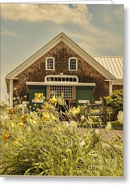 New England Farmhouse Greeting Card by Juli Scalzi