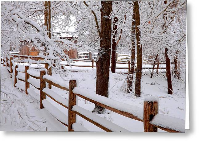 New England Winter Greeting Card by Dianne Cowen