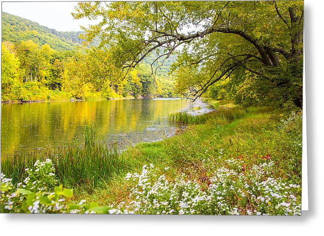 New Englands Early Autumn Greeting Card by Karol Livote