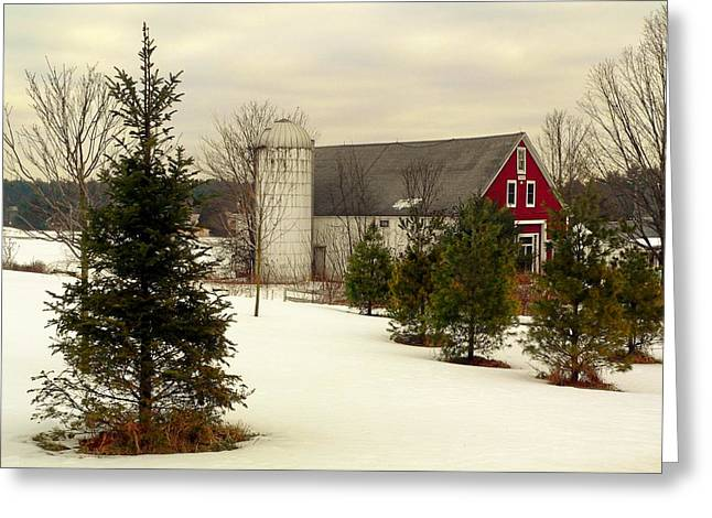 New Hampshire Barn Greeting Card by Janice Drew
