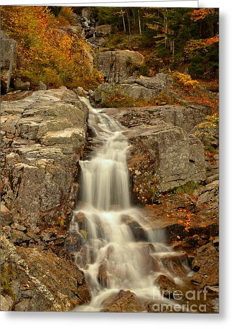 New Hampshire Flume Cascade Greeting Card by Adam Jewell