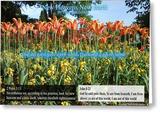 New Heavens New Earth Greeting Card