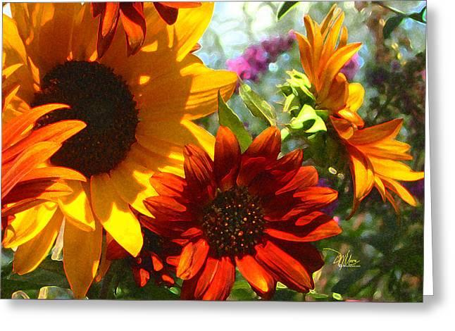 New Mexico Summer Sunflower Garden Greeting Card