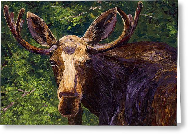 Loose Moose Greeting Card by Mary Giacomini