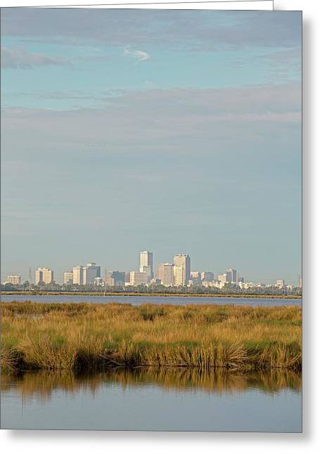 New Orleans And Surrounding Wetlands Greeting Card by Jim West