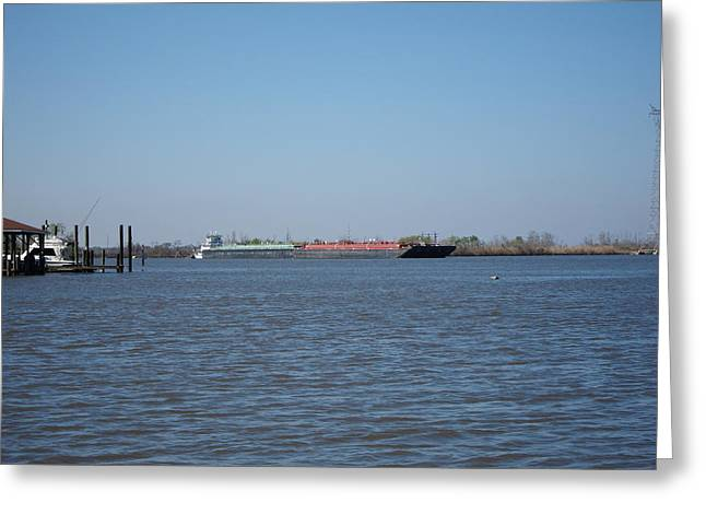 New Orleans - Swamp Boat Ride - 121225 Greeting Card by DC Photographer