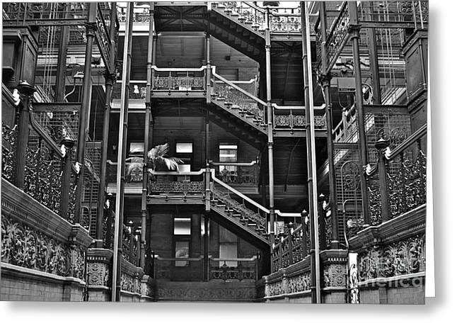 New Photographic Art Print For Sale Bradbury Building Downtown La Greeting Card