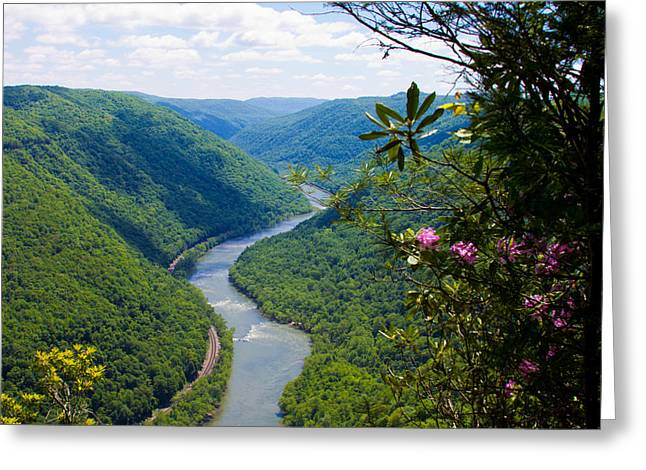 New River View Greeting Card
