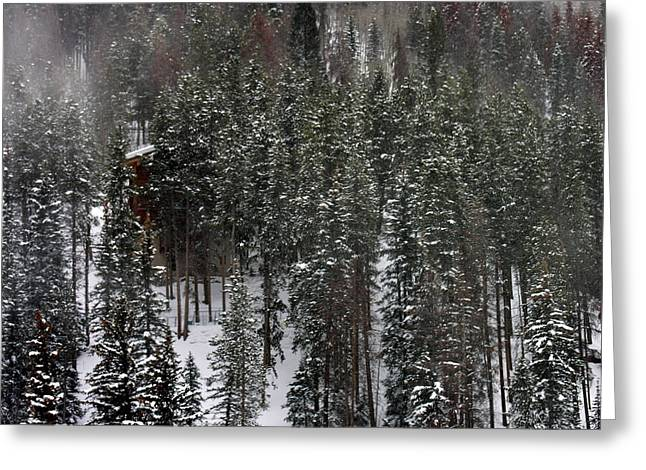 New Snow At Beaver Creek Colorado Greeting Card by Jacqueline M Lewis