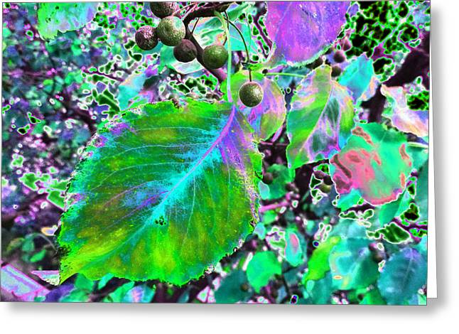 New Years Eve V7 Greeting Card by Kenneth James