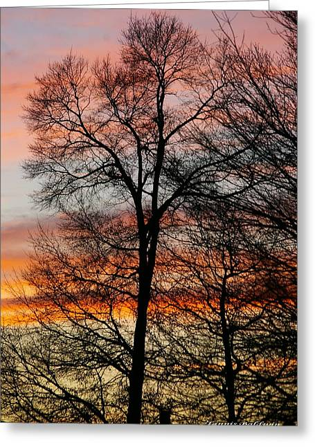 New Years Sunset Greeting Card