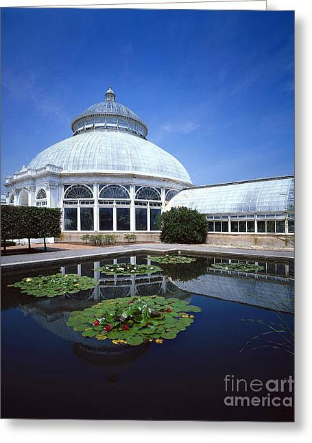 New York Botanical Gardens Greeting Card by Rafael Macia