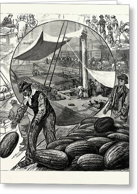 New York Incidents Of The Watermelon Trade In The Metropolis Greeting Card by American School