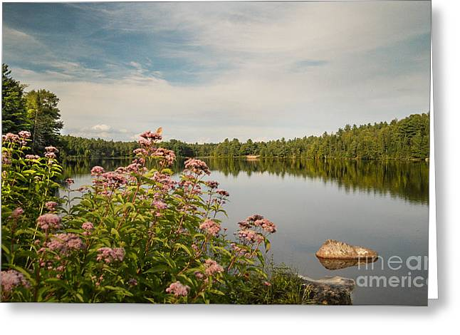 Greeting Card featuring the photograph New York Lake by Debbie Green