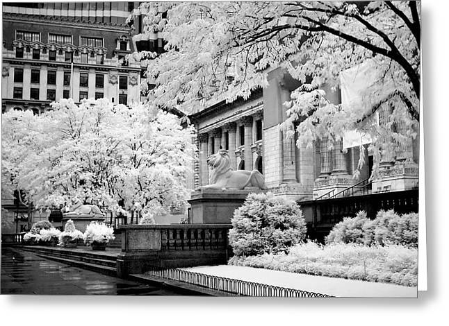 New York Public Library Ir Greeting Card