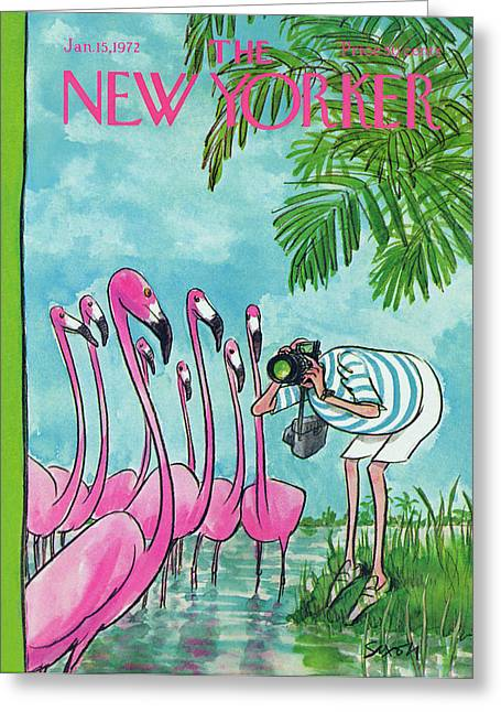 New Yorker January 15th, 1972 Greeting Card by Charles Saxon