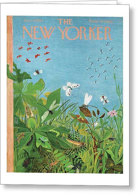 New Yorker June 9th, 1962 Greeting Card
