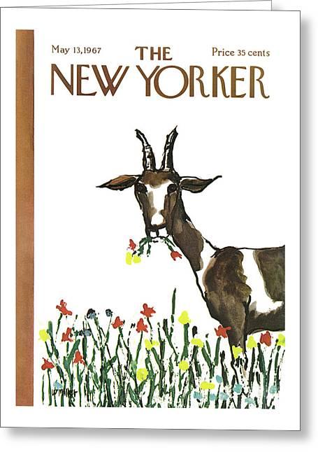 New Yorker May 13th, 1967 Greeting Card