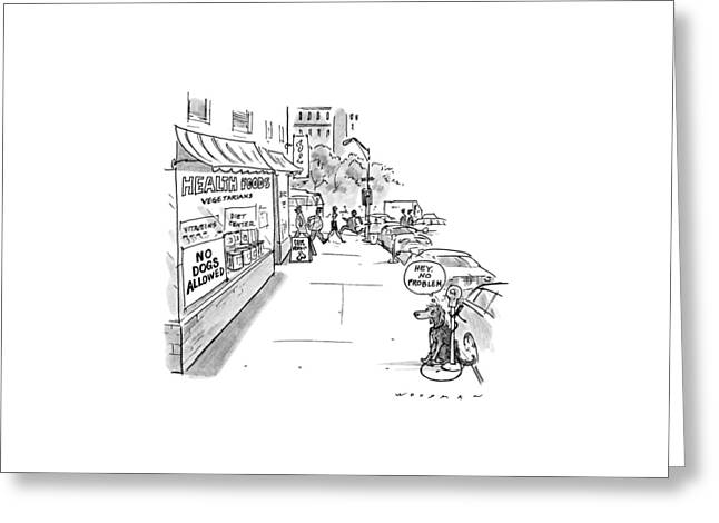 New Yorker May 20th, 1991 Greeting Card by Bill Woodman